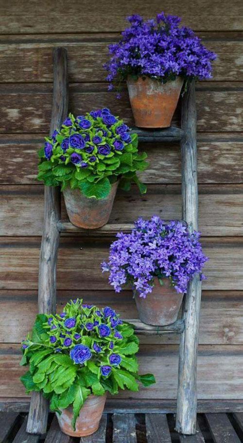 Цветник с использованием старой лестницы своими руками