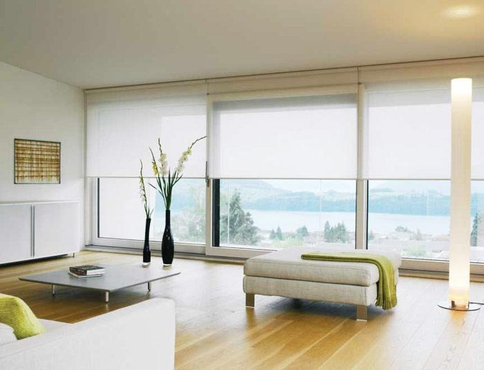 Светлые рулонные шторы в гостиной
